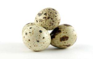 tcs_quail_eggs-6